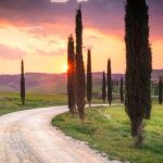 Tuscany Bike Tour - Asciano