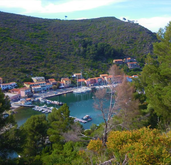 Sailing in Italy - Capraia harbor from the top