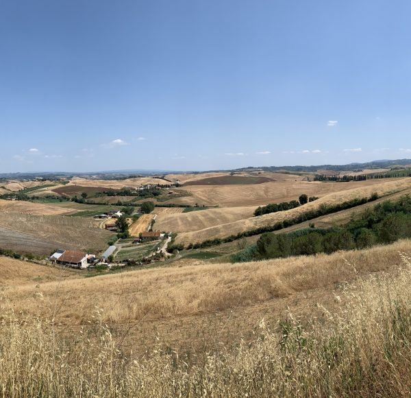 Via Francigena - A joy for your eyes & your mind