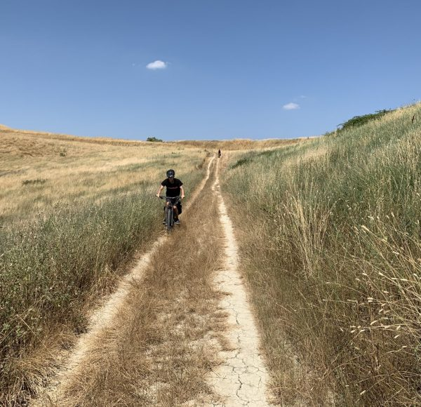 Via Francigena - Full immersion bike experience
