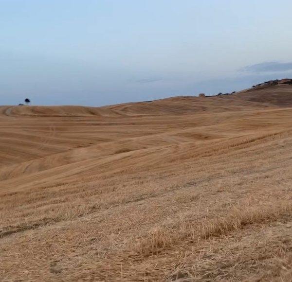 Crete Senesi - True Tuscany bike tour