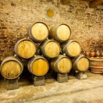 Tuscany Bike Tour - Wine tasting