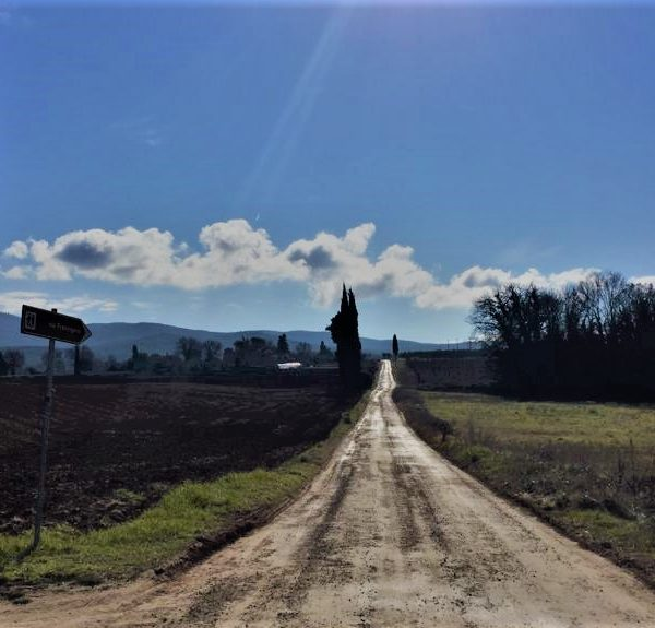 Via Francigena by Bike - From Lucca to Siena - On the road
