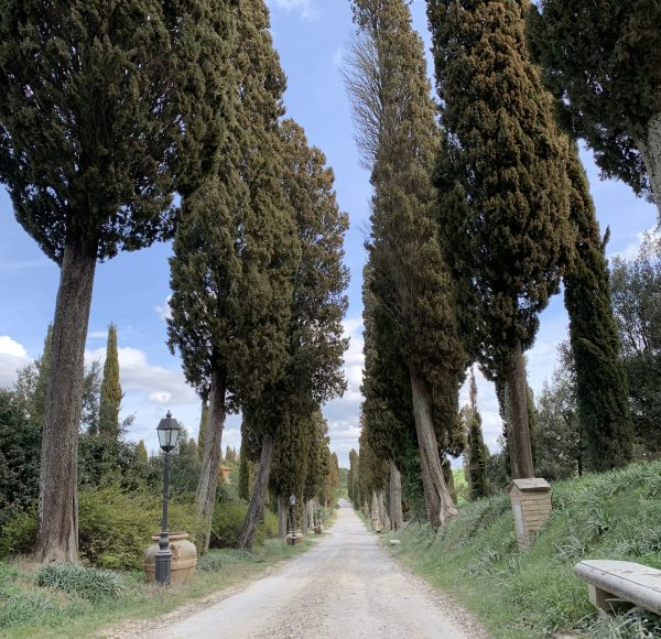 Backroads Tuscany bike tour