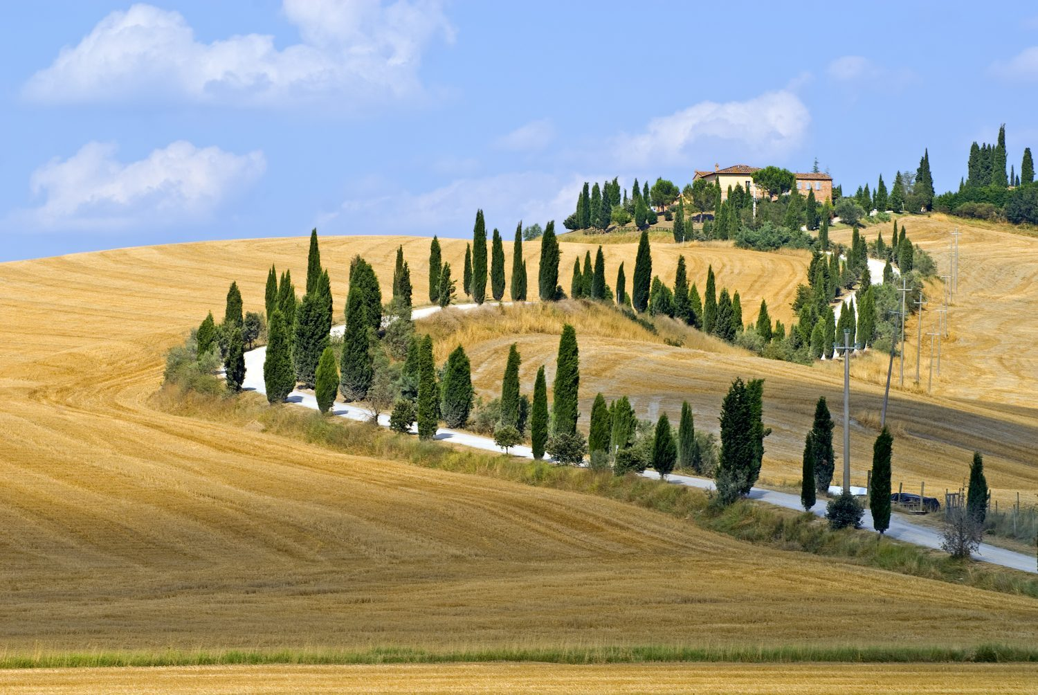 On the Backroads of Tuscany Bike Tours