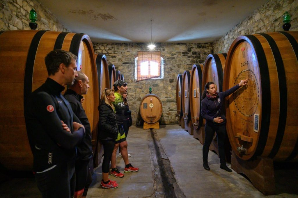 Wine tasting and cellar tour