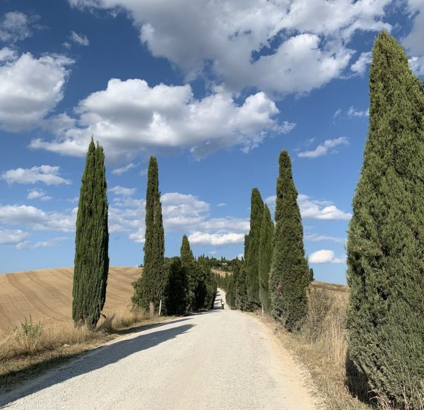 Tuscany dirty roads - Cycling in the dust